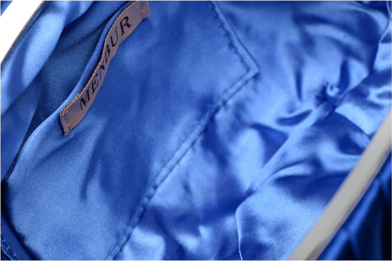 Paniculata Strong Blue