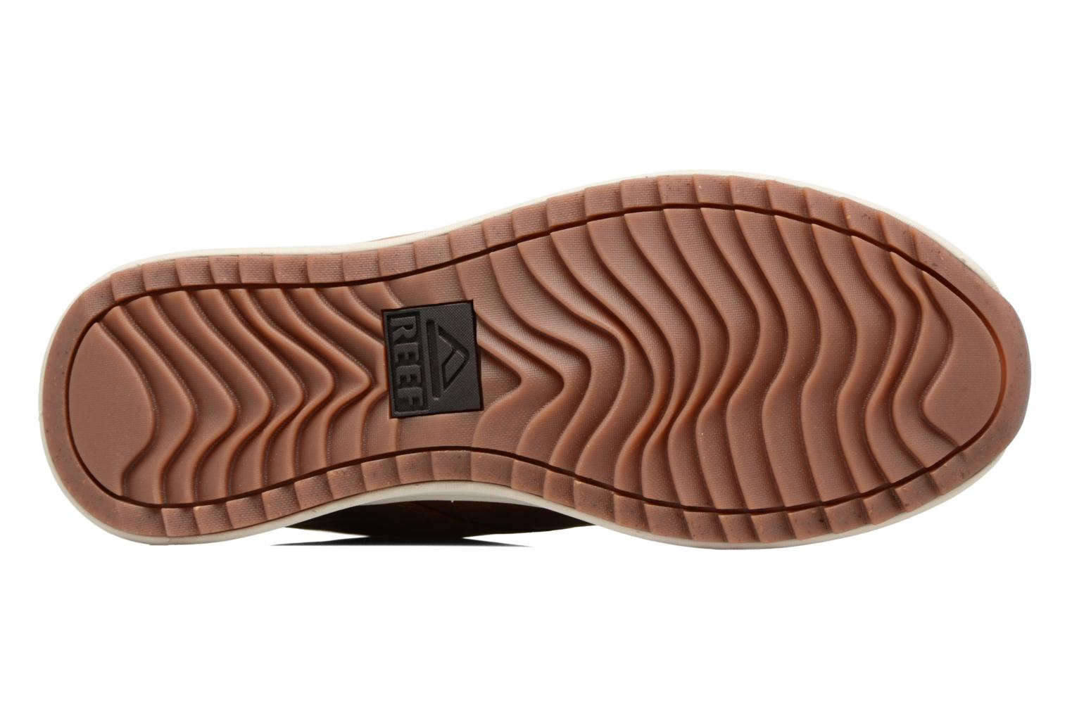 Reef Mission Le Brown