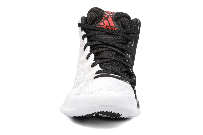 Chaussures de sport Adidas Performance Crazy Heat J Blanc vue portées chaussures