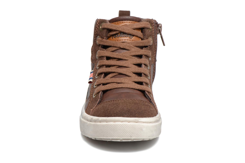 Baskets Xti Pasci 54008 Marron vue portées chaussures