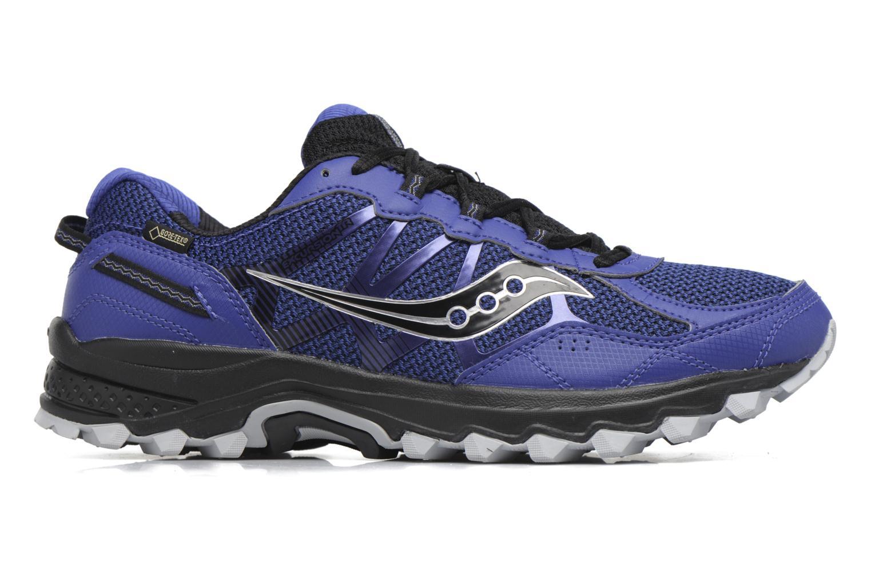 Chaussures de sport Saucony Excursion Tr11 Gtx Bleu vue derrière