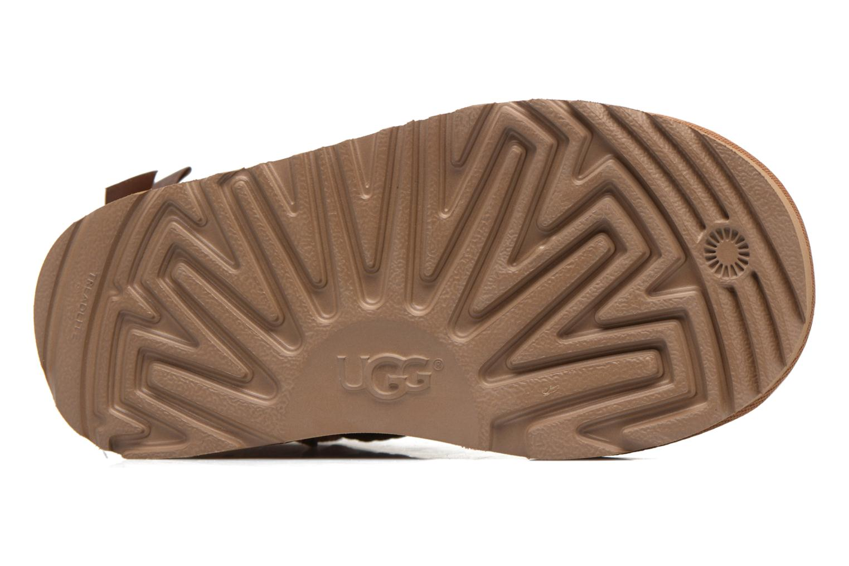Mini Bailey Bow II K Chestnut