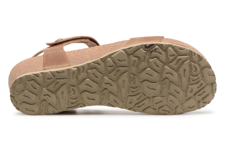 Panama Jack Capri Bruin Lage Prijzen Goedkope Koop Footlocker Foto's Nieuw Online Te Koop Verkoop Sast knyscVXc
